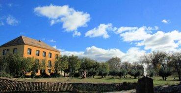 Un coleccionista abrirá una casa rural en Calatorao protagonizada por Tintín